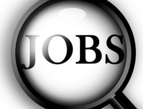 926 locuri de muncă vacante în Spaţiul Economic European