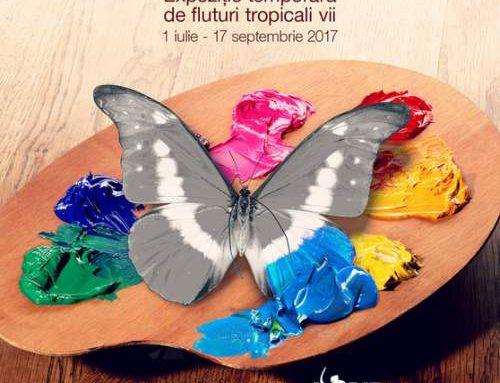 Culorile prind Aripi – Expozitie de fluturi tropicali vii la Muzeul Antipa