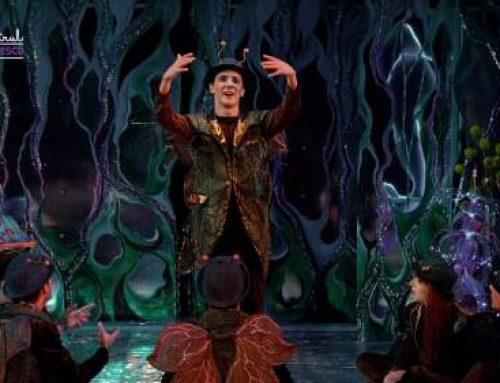 """Spectacolul """"Lampio și grăuntele de lumină"""" deschide anul la Teatrul """"Stela Popescu"""""""