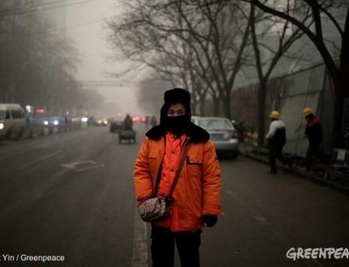 7 sfaturi de la la Greenpeace pentru a-ți proteja familia de aerul poluat