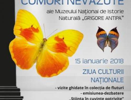"""Comori nevazute ale Muzeului Național de Istorie Naturală """"Grigore Antipa"""""""