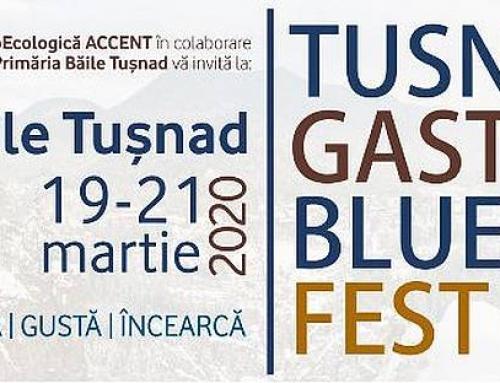 Tușnad Gastro Blues Festival – Program și pensiuni participante